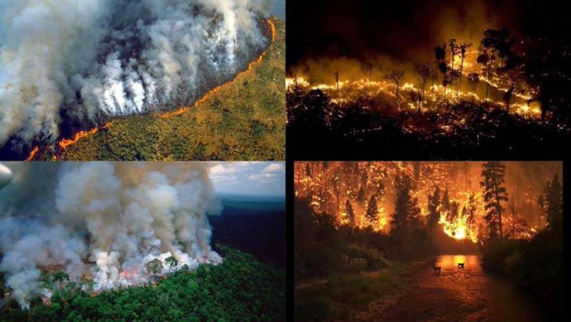 El amazonas tiene entre sus pocos aliados a las redes sociales en donde también arde la indignación