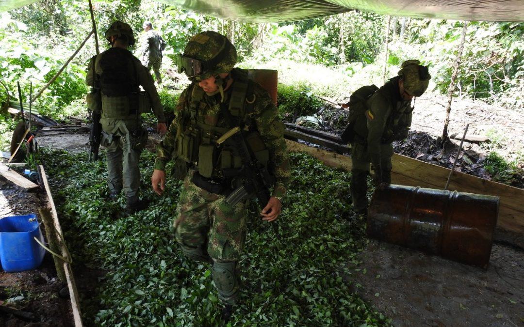 Ejército desmantela 21 laboratorios de coca en Chocó