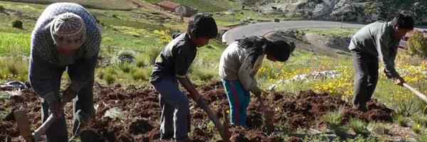Con proyecto de ley gobierno busca aliviar carga financiera a los campesinos