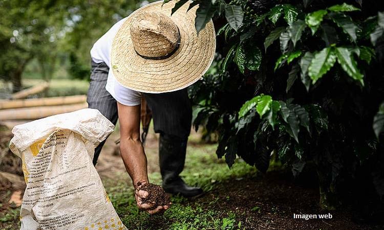 El Banco Agrario ha desembolsado créditos por $1,6 billones a pequeños y medianos productores