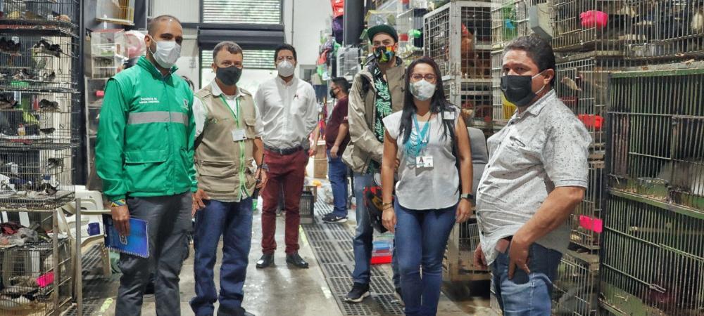 Medellín: con acciones de control y sensibilización se garantiza el bienestar de la fauna doméstica comercializada en la Plaza Minorista