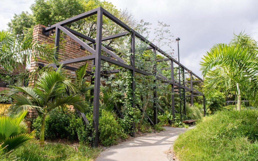Medellín se fortalece como ecociudad con la siembra de 230 árboles y 2.800 metros cuadrados de zonas verdes