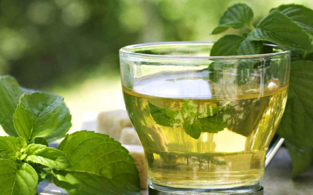 Conozca los efectos secretos que proporciona tomar té verde
