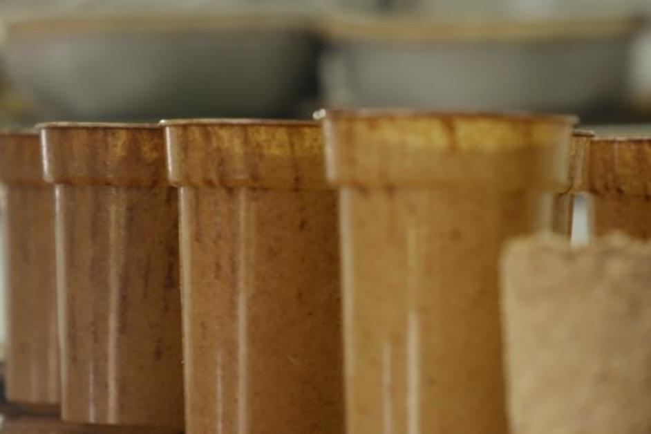 A reducir uso de desechables: En Medellín crean un vaso biodegradable con residuos de café