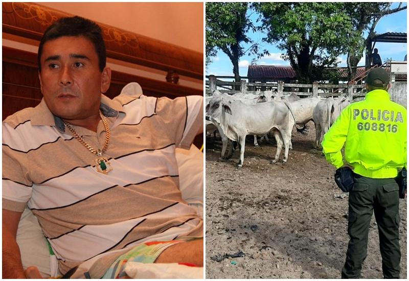 Contundente golpe a 'Pedro Orejas': Fiscalía le aplicó extinción de dominio a bienes por más de un billón de pesos